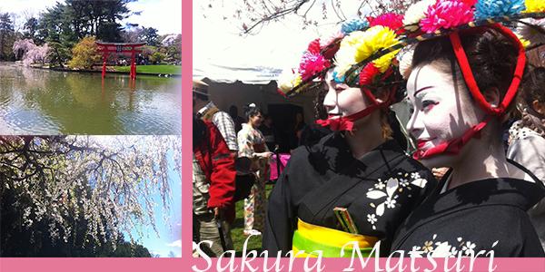 SakuraMatsuriCoverPhoto